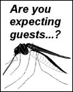 A bug about to fly in. Are you expecting guests?